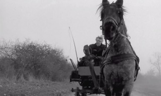 The Turin Horse by Bela Tarr (2011)